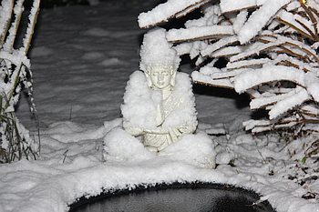 Enlightenment Transmission: The Silence of Falling Snow